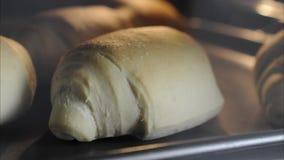 Pão do óleo que cozinha no timelapse do forno vídeos de arquivo