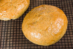 Pão dos alecrins do artesão na cremalheira refrigerando Fotos de Stock Royalty Free