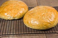 Pão dos alecrins do artesão na cremalheira refrigerando Fotos de Stock
