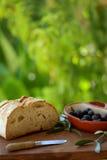Pão e azeitonas. Imagens de Stock