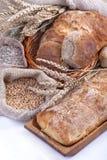 Pão e grões fotografia de stock royalty free