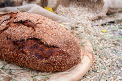 Pão em uma bandeja de madeira Imagem de Stock