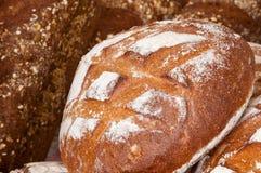 Pão fresco Fotos de Stock Royalty Free