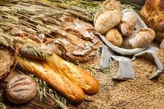 Pão integral inteiro Imagem de Stock Royalty Free