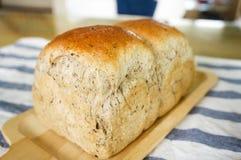 Pão inteiro caseiro recentemente cozido da grão do trigo Imagem de Stock Royalty Free