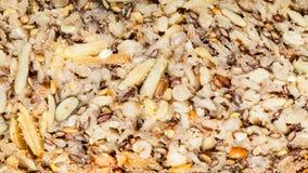 Pão inteiro da grão do close up detalhado com muitas grões Fotografia de Stock Royalty Free