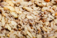 Pão inteiro da grão do close up detalhado com muitas grões Foto de Stock