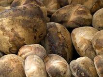 Pão maltês Imagem de Stock Royalty Free