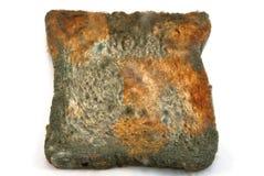 Pão mofado Fotografia de Stock Royalty Free