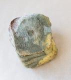 Pão Moldy Imagem de Stock Royalty Free