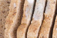 Pão Mouldy Foto de Stock