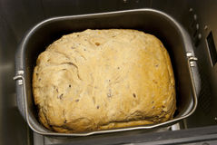 Pão no fabricante de pão Fotos de Stock Royalty Free