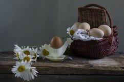 Pão, queijo e ovos Fotos de Stock Royalty Free