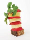 Pão, queijo, radish, hortaliças Imagens de Stock