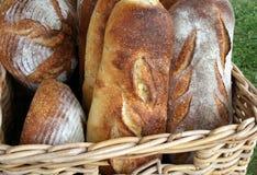Pão rústico recentemente cozido Fotografia de Stock