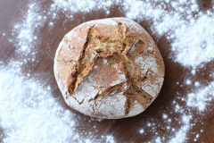 Pão recentemente cozido Foto de Stock