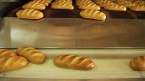 Pão recentemente cozido vídeos de arquivo