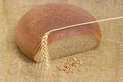 Pão redondo do trigo e de centeio, ponto do trigo e grão do trigo Fotos de Stock Royalty Free