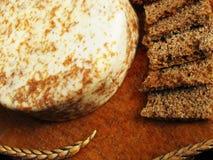 Pão soletrado com queijo especial na placa de madeira fotografia de stock