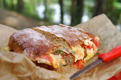 Pão vegetal em um piquenique Imagens de Stock Royalty Free
