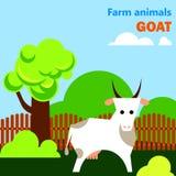 Pädagogisches flashcard mit Ziege auf dem Bauernhof Stockfoto
