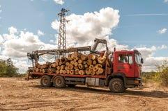 Päfyllning av avverkad timmer i en lastbil med kranen Arkivbild