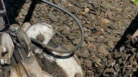 Päfyllning av kol en lastbil genom att använda en hydraulisk grävskopa med griparen arkivfilmer