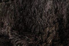 Päls- textur Arkivbild