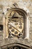 Päpstliches Emblem an den Päpsten Palace, Avignon, Frankreich Stockbild