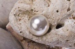 pärla Arkivfoton