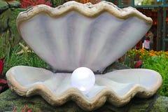 Pärla i öppen ostron Arkivbilder