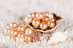 Pärla i skalet royaltyfri fotografi