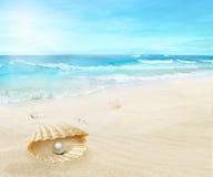 Pärla på stranden arkivbilder