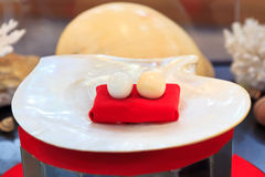 Pärla som är störst i världen Royaltyfri Foto