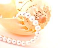 Pärlemorfärg halsband Arkivfoton