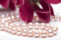 Pärlemorfärg halsband i blomman Arkivfoto