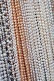 Pärlemorfärg Hanglinje Royaltyfri Fotografi