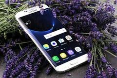 Pärlemorfärg Samsung S7 KANT på en lavendelbakgrund Fotografering för Bildbyråer