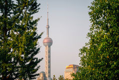 Pärlemorfärg torn i Shanghai mellan träd Arkivbild