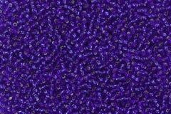 Pärlor av blåttfärg Royaltyfria Bilder