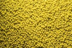 Pärlor av det gula färgslutet upp makrofotoet Arkivbilder