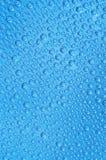 Pärlor - detalj av vattendropparna Royaltyfria Foton