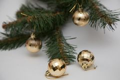 Pärlor för för julgranfilial och guld Arkivbild