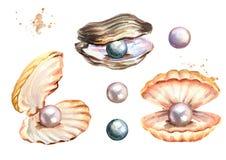 Pärlor och skaluppsättningen räcker den utdragna vattenfärgillustrationen på vit bakgrund