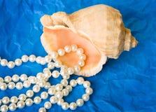 pärlor pryder med pärlor skalet Arkivbild