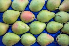 Päron i asken Royaltyfria Bilder