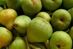 Päron med bönor Royaltyfria Foton