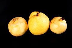 Päron och granatäpple för ny grupp orientaliskt Arkivfoton