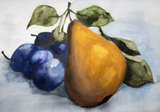 Päron- och plommonvattenfärg royaltyfri illustrationer