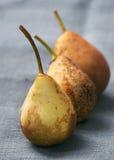 Päron på en servett i rad Royaltyfria Foton